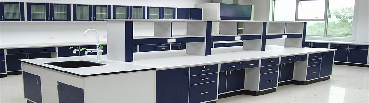 laboratory cupboard laboratory furniture laboratory fume hoodfume cupboardsteel lab